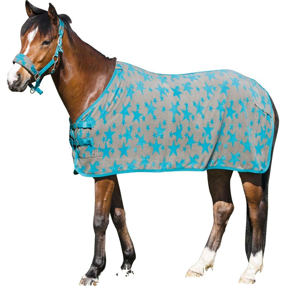 Выкройки вальтрапов для лошадей фото 652